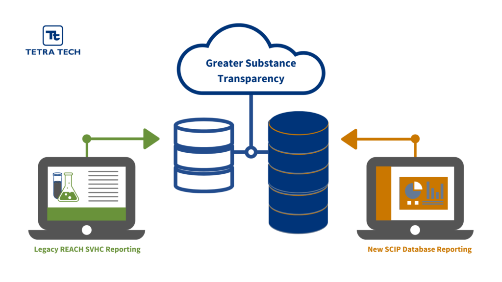 SCIP Database Services